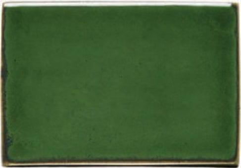 ירוק אצות