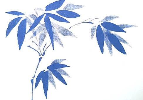 במבוק כחול